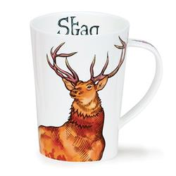 Stag by Argyll