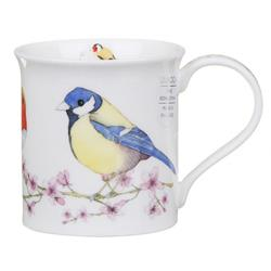 Dunoon Hedgerow Birds by Bute | Bluetit
