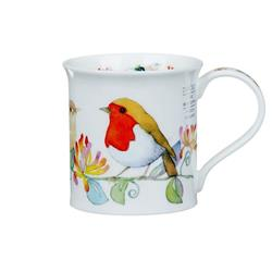 Dunoon Hedgerow Birds by Bute | Robin
