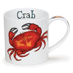 Crab by Orkney