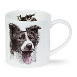 Hannah Longmuir Collection by Orkney | Border Collie