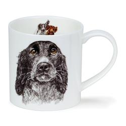 Hannah Longmuir Collection by Orkney | Cocker Spaniel