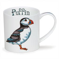 Puffin  by Orkney
