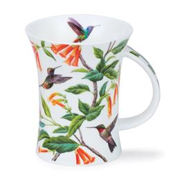 Hummingbirds by Richmond | Orange