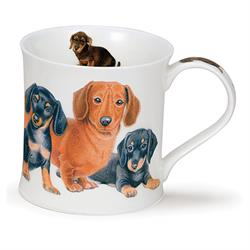Designer Dogs by Wessex | Dachshund