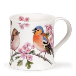 The Birdlife Collection Boxed Gift Sets by Wessex | Buchfink