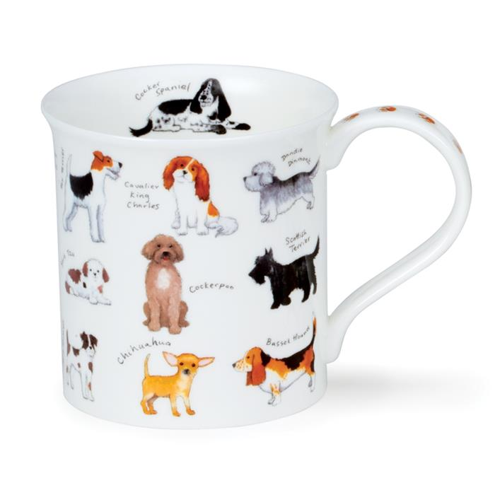 Animal Breeds by Bute | Dog